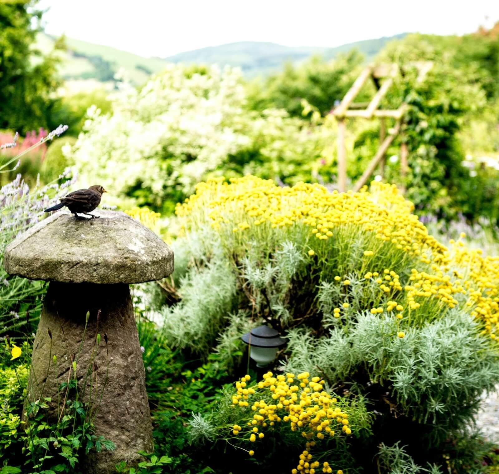 Enjoy our garden as you eat breakfast